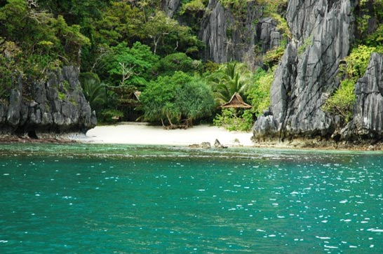 Island Life: Diving Cebu and Palawan